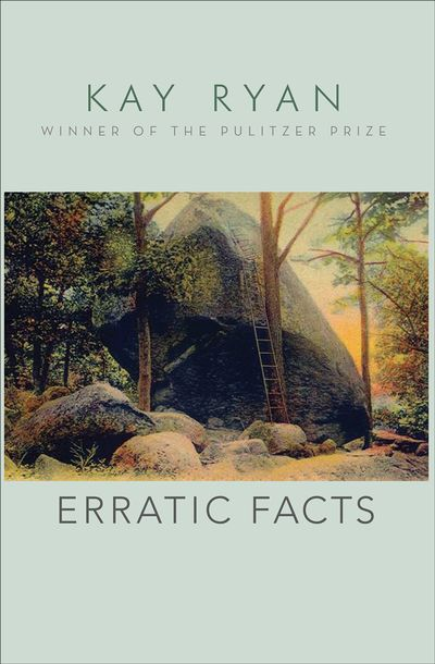 Buy Erratic Facts at Amazon