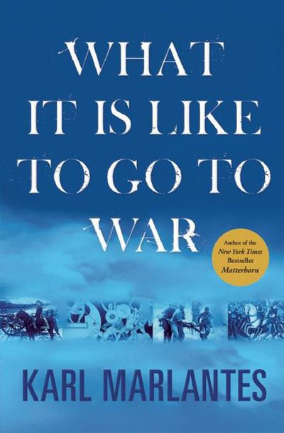Buy What It Is Like to Go to War at Amazon