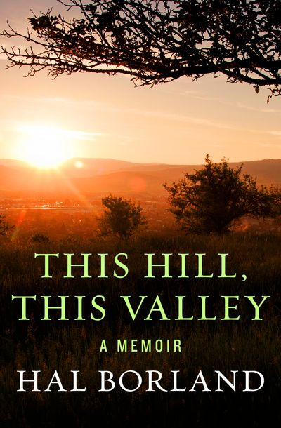 Buy This Hill, This Valley at Amazon