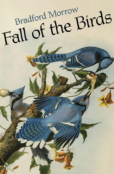 Buy Fall of the Birds at Amazon