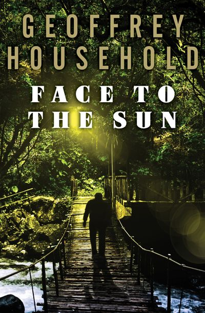 Buy Face to the Sun at Amazon