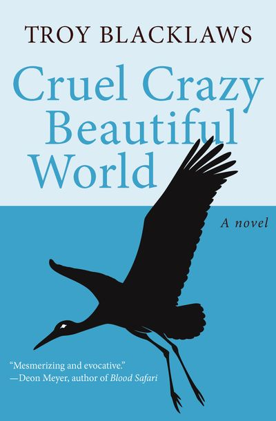Buy Cruel Crazy Beautiful World at Amazon