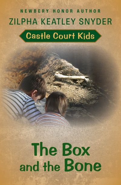 Buy The Box and the Bone at Amazon