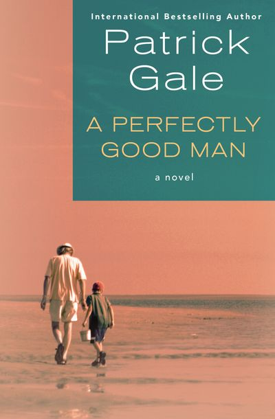 Buy A Perfectly Good Man at Amazon