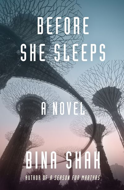 Buy Before She Sleeps at Amazon