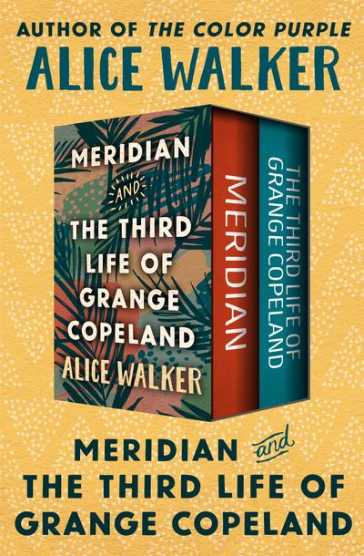 Buy Meridian and The Third Life of Grange Copeland at Amazon