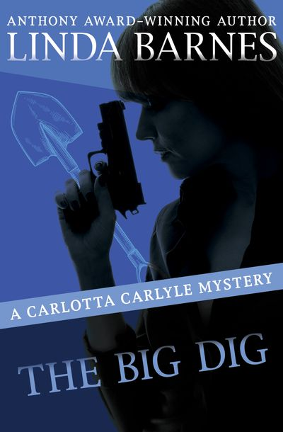 Buy The Big Dig at Amazon