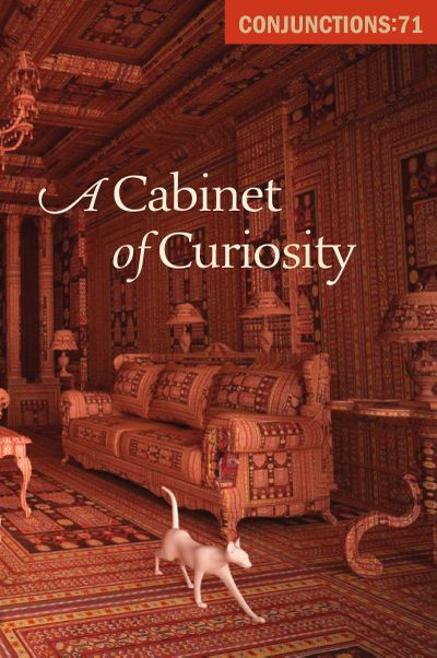Buy A Cabinet of Curiosity at Amazon
