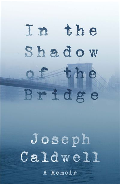 Buy In the Shadow of the Bridge at Amazon
