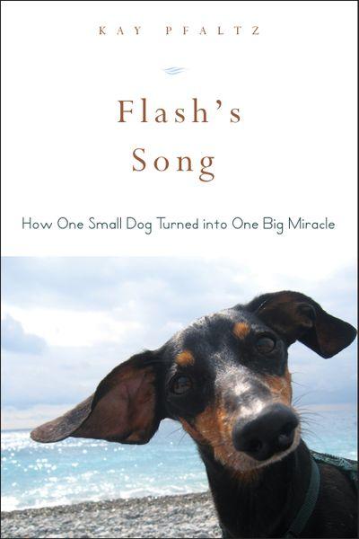 Buy Flash's Song at Amazon