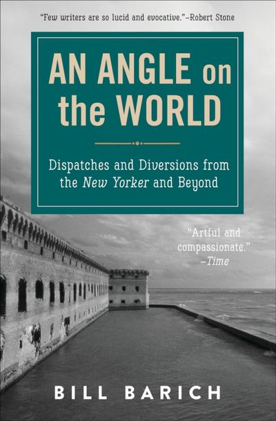 Buy An Angle on the World at Amazon