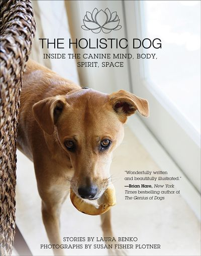 Buy The Holistic Dog at Amazon