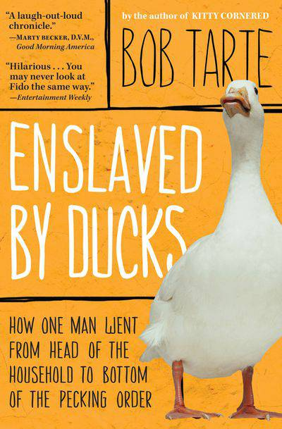 Buy Enslaved by Ducks at Amazon
