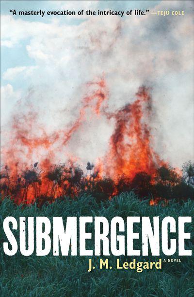 Buy Submergence at Amazon