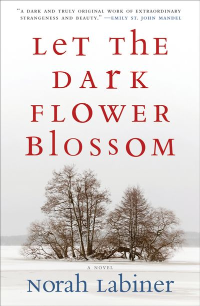 Buy Let the Dark Flower Blossom at Amazon