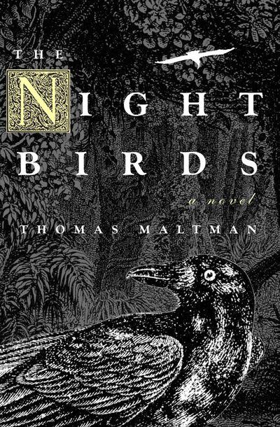 Buy The Night Birds at Amazon