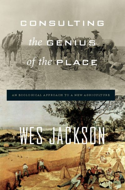 Buy Consulting the Genius of the Place at Amazon