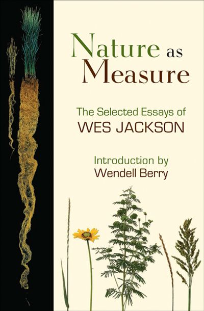 Buy Nature as Measure at Amazon