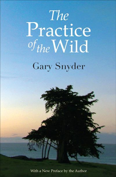 Buy The Practice of the Wild at Amazon