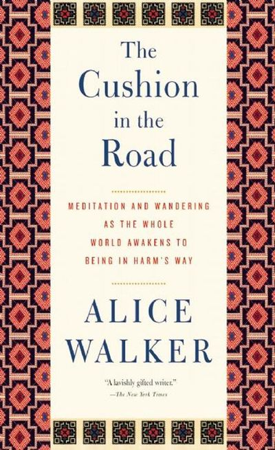 Buy The Cushion in the Road at Amazon