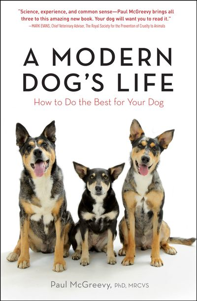 Buy A Modern Dog's Life at Amazon
