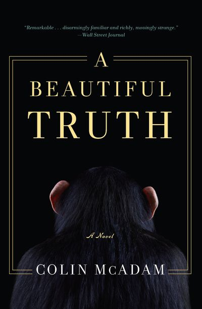 Buy A Beautiful Truth at Amazon