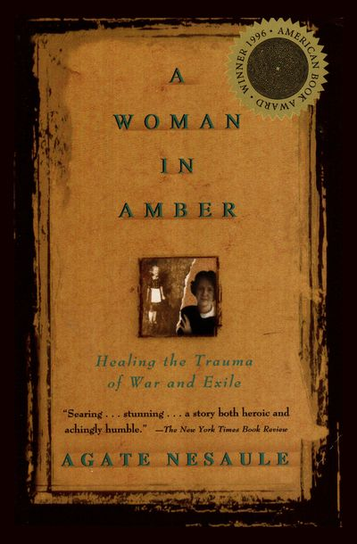 Buy A Woman in Amber at Amazon
