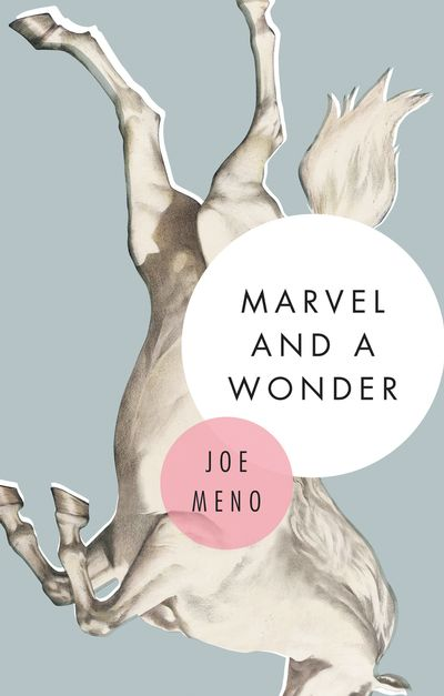 Buy Marvel and a Wonder at Amazon