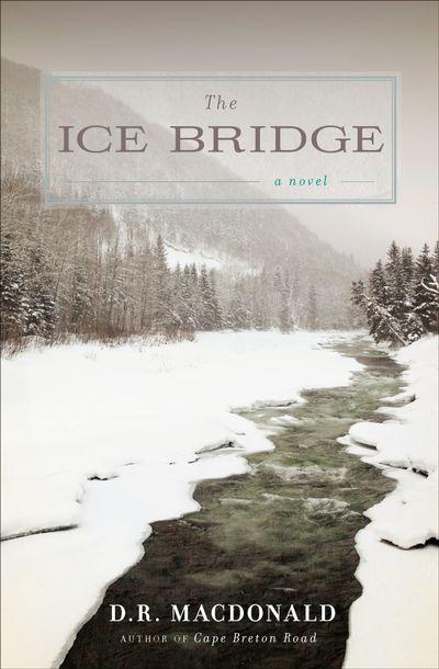Buy The Ice Bridge at Amazon