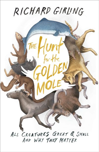 Buy The Hunt for the Golden Mole at Amazon