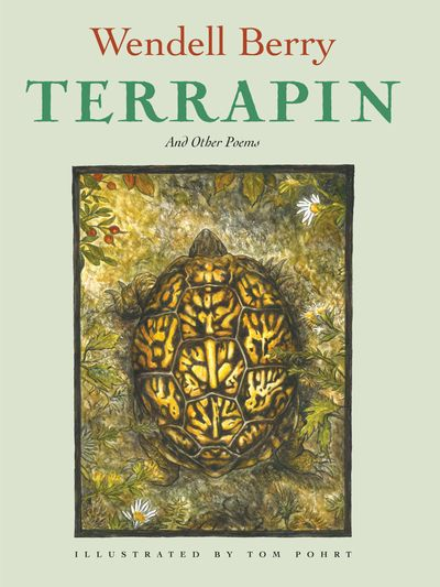 Buy Terrapin at Amazon