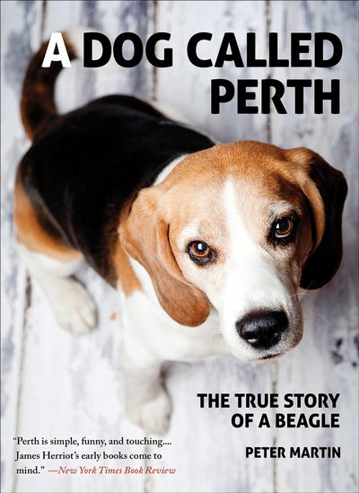 Buy A Dog Called Perth at Amazon