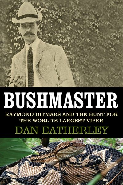 Buy Bushmaster at Amazon