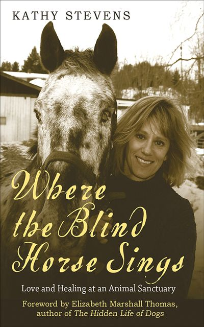 Buy Where the Blind Horse Sings at Amazon