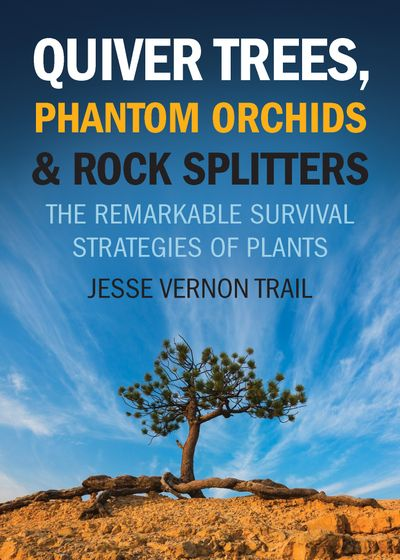 Buy Quiver Trees, Phantom Orchids & Rock Splitters at Amazon