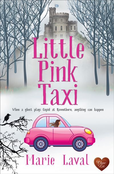 Buy Little Pink Taxi at Amazon