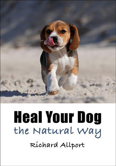 Buy Heal Your Dog the Natural Way at Amazon