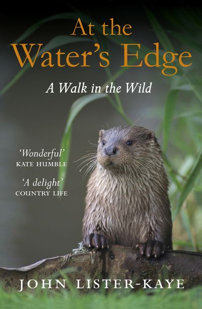 Buy At the Water's Edge at Amazon