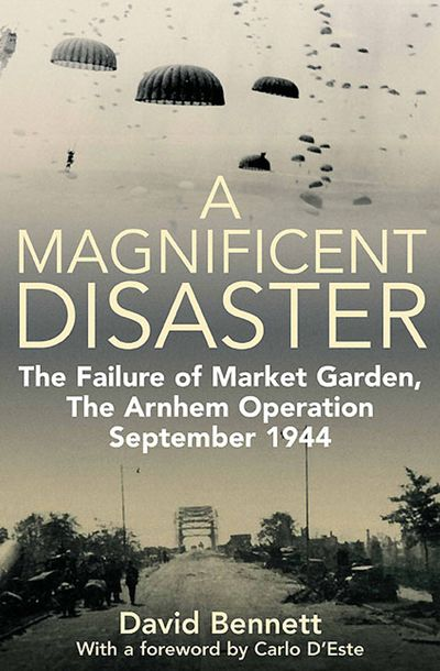 Buy A Magnificent Disaster at Amazon