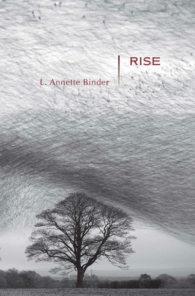 Buy Rise at Amazon