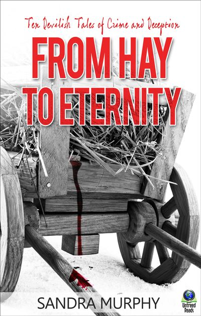 Buy From Hay to Eternity at Amazon