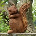 Forest Squirrel