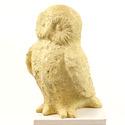 Owen Owl