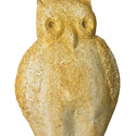 Owl Notten  20