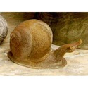 Slow Snail 5