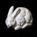 Countryside Rabbit