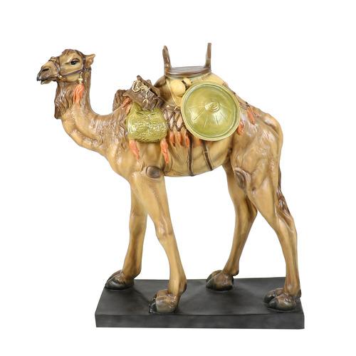 Nativity Camel 50 H   Ntv1.2
