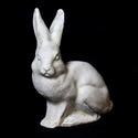 Rabbit-Upright Ears 9