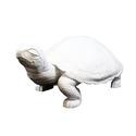 Giant Sleepy Turtle  35 W