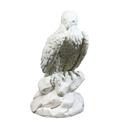 Eagle Hunter 28